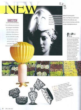 Michael-Malapert-Interior-Design-presse-Maison-Francaise